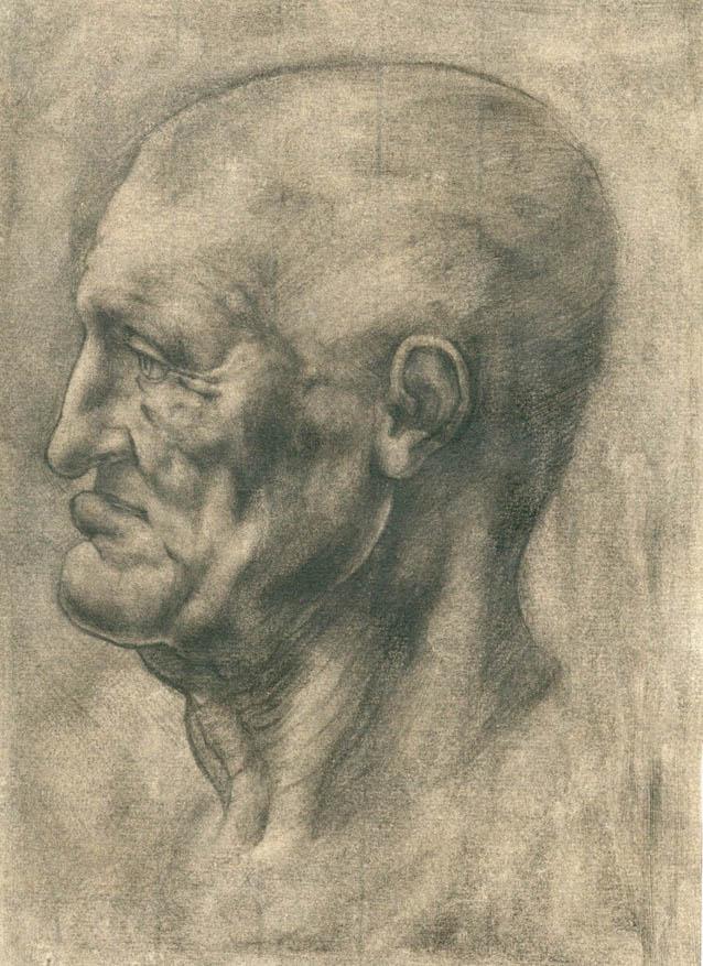 Studie nach Leonardo